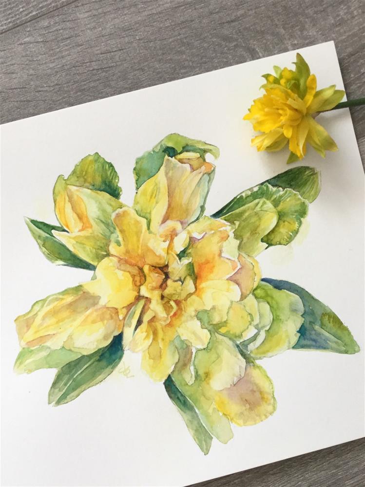 """Daffodil Lament"" original fine art by Christy Obalek"