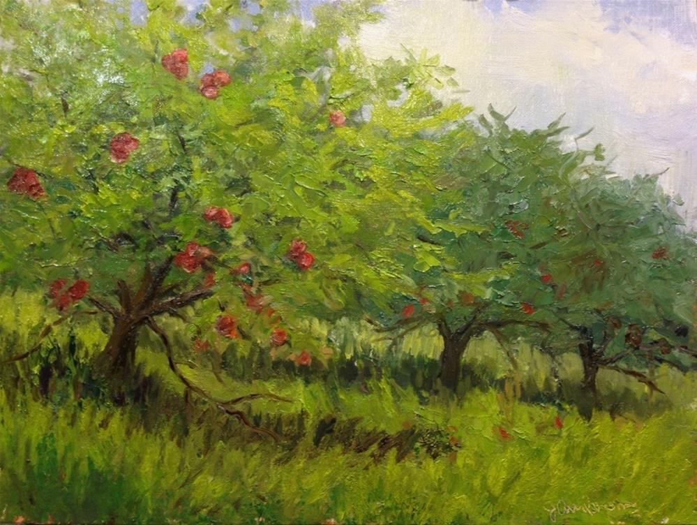 """Apple Trees"" original fine art by Judith Anderson"