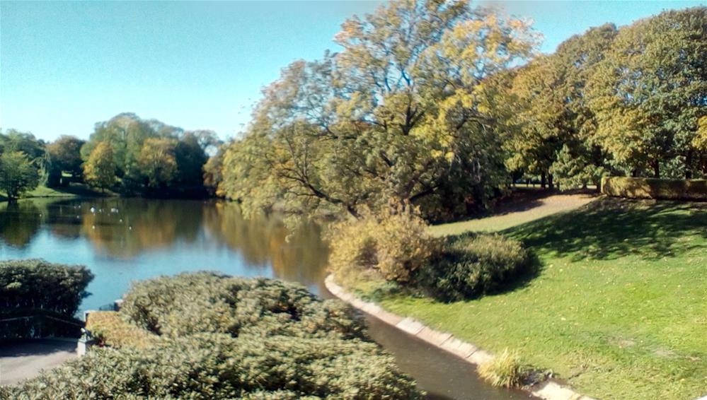 """Pond at Frogner Park, Oslo, Norway"" original fine art by Judith Freeman Clark"