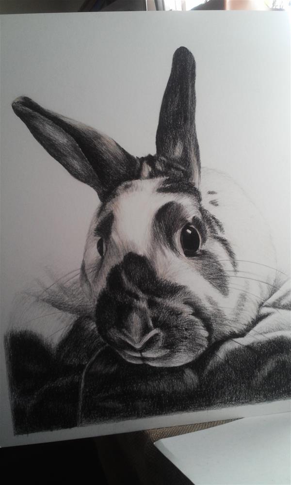 """""""Bunny Rabbit"""" original fine art by Camille Morgan"""
