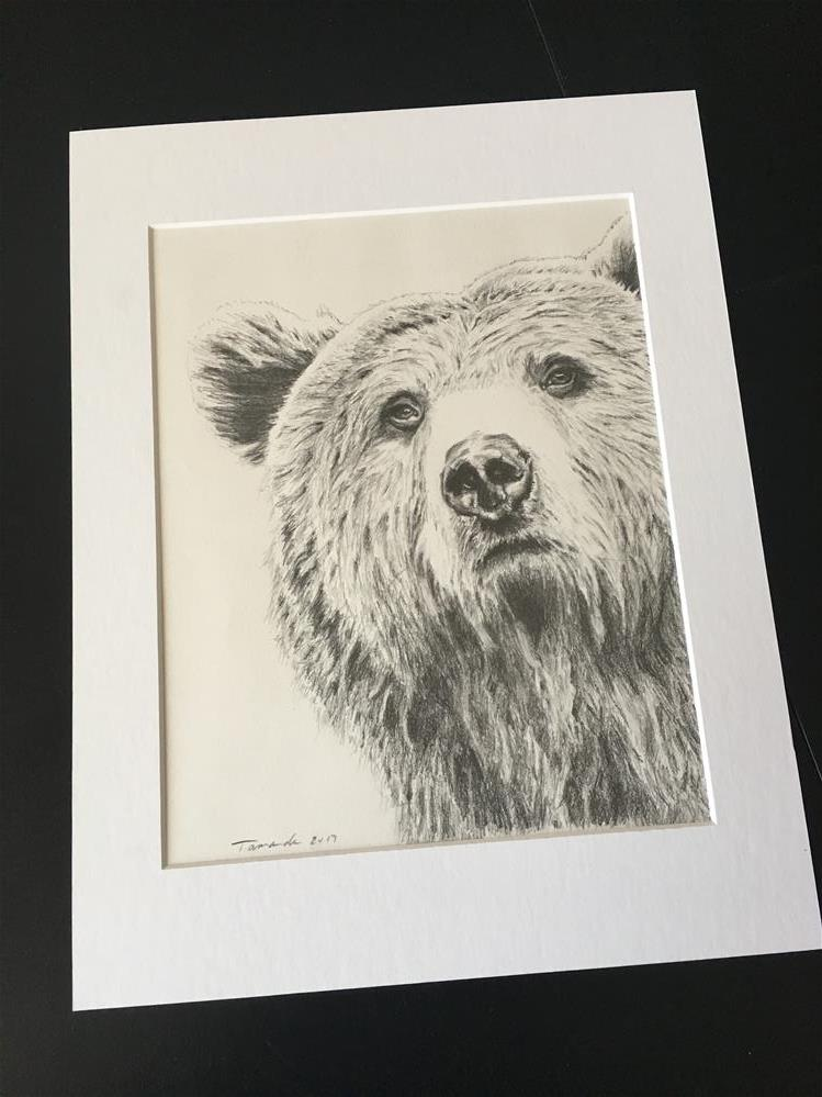 """Grizzly Bear"" original fine art by Tamanda Elia"