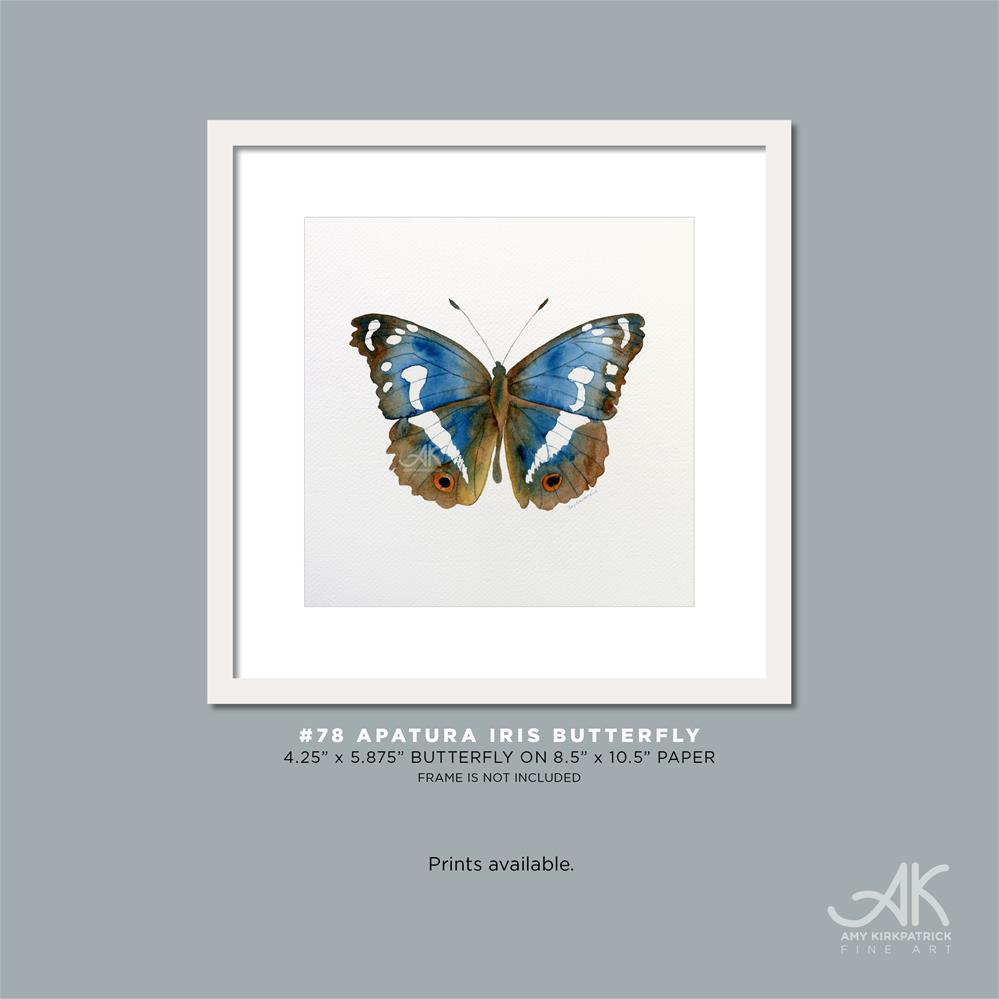 """#78 Apatura Iris Butterfly #0388"" original fine art by Amy Kirkpatrick"
