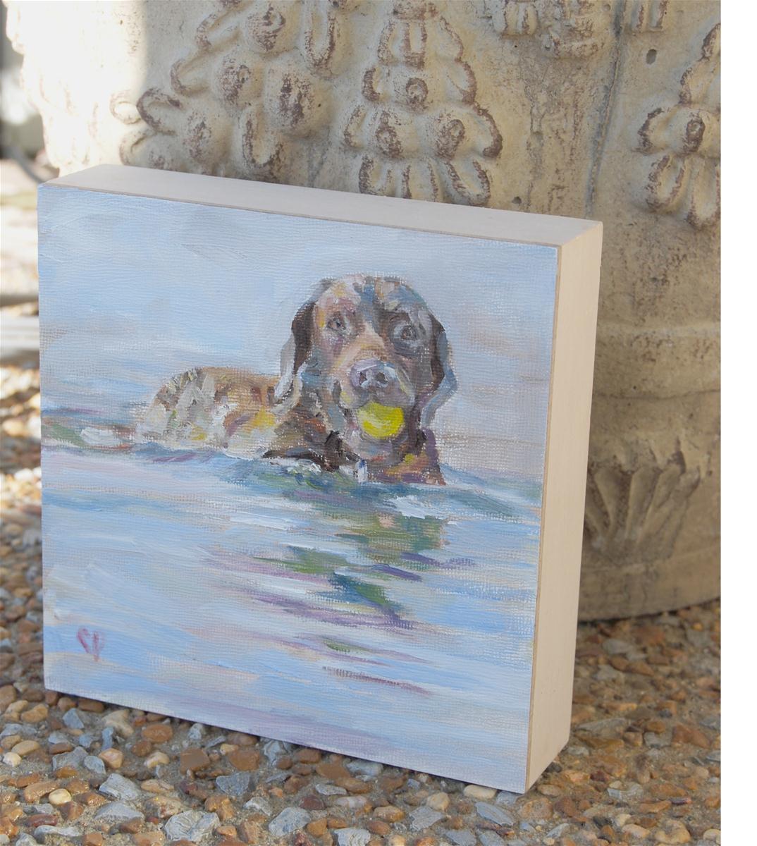 """""""Waterdog"""" original fine art by Carol DeMumbrum"""