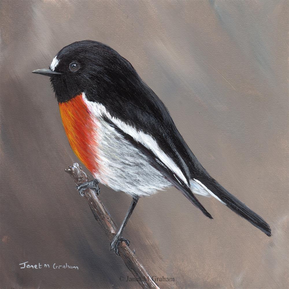 """Scarlet Robin No 6"" original fine art by Janet Graham"