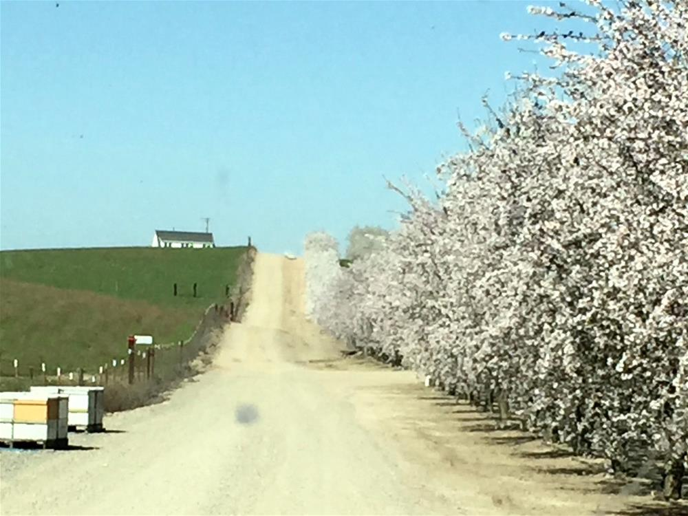 """Farm House Road"" original fine art by Rhett Regina Owings"