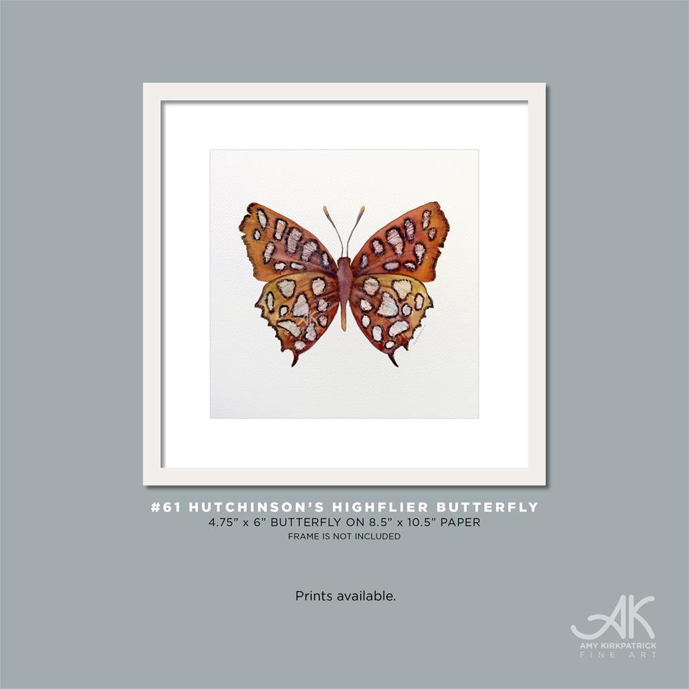 """#61 Hutchinson's Highflier Butterfly #0371"" original fine art by Amy Kirkpatrick"