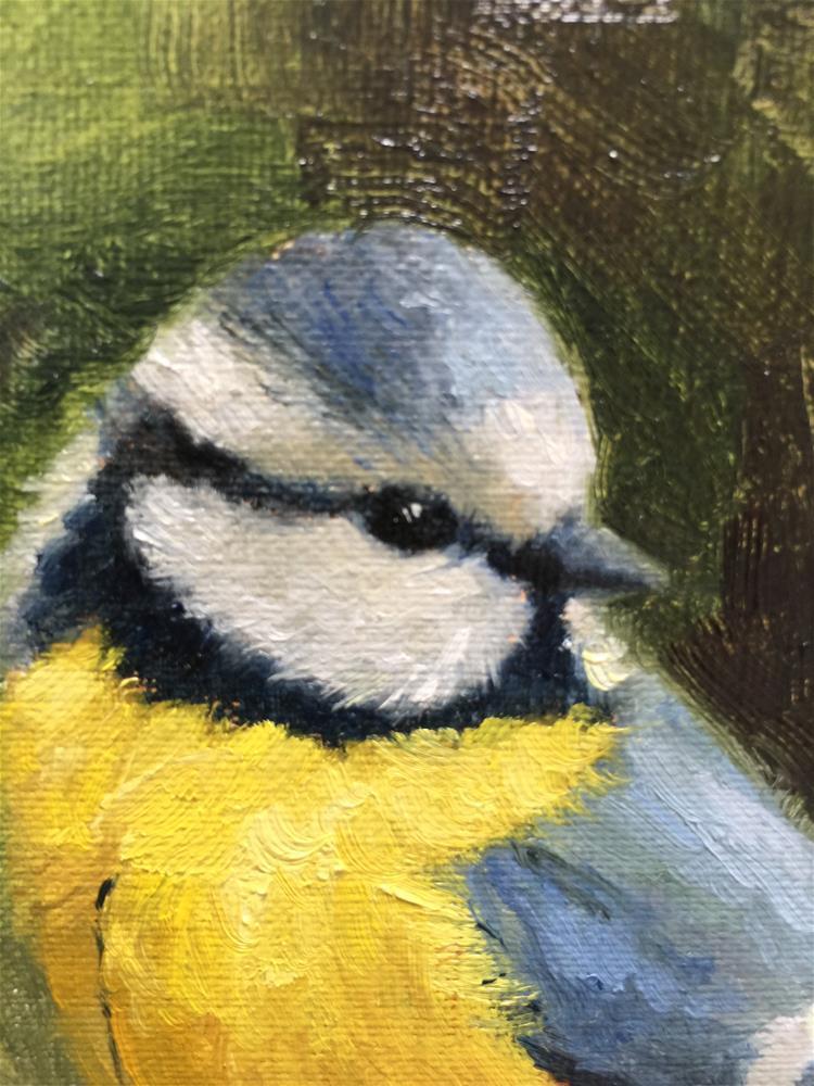 """Blue Tit"" original fine art by Krista Eaton"