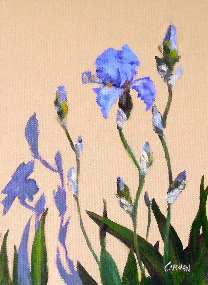 """""""Shadow Irises, 6x8 Oil on Canvas Panel, Floral Daily Painting"""" original fine art by Carmen Beecher"""