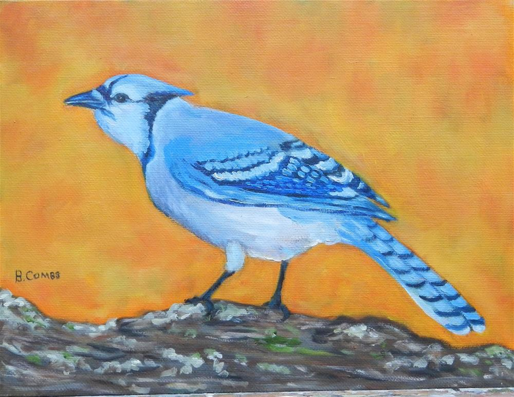 """Bluejay"" original fine art by Bebe Combs"