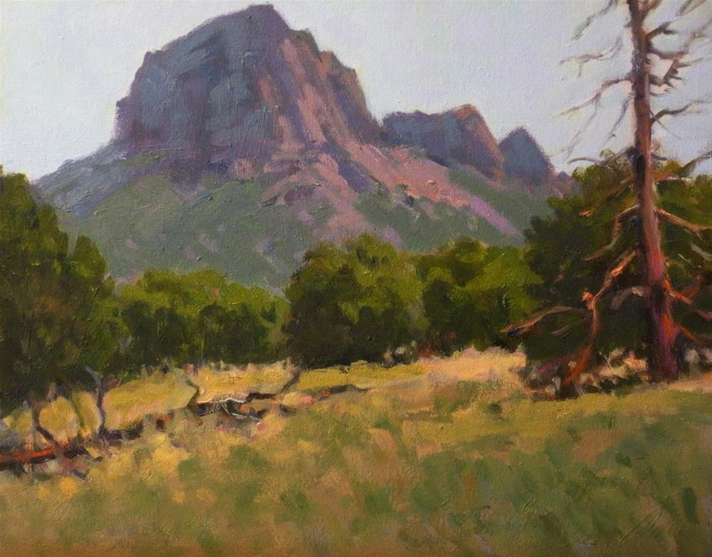 """Chisos Junipers"" original fine art by David Forks"