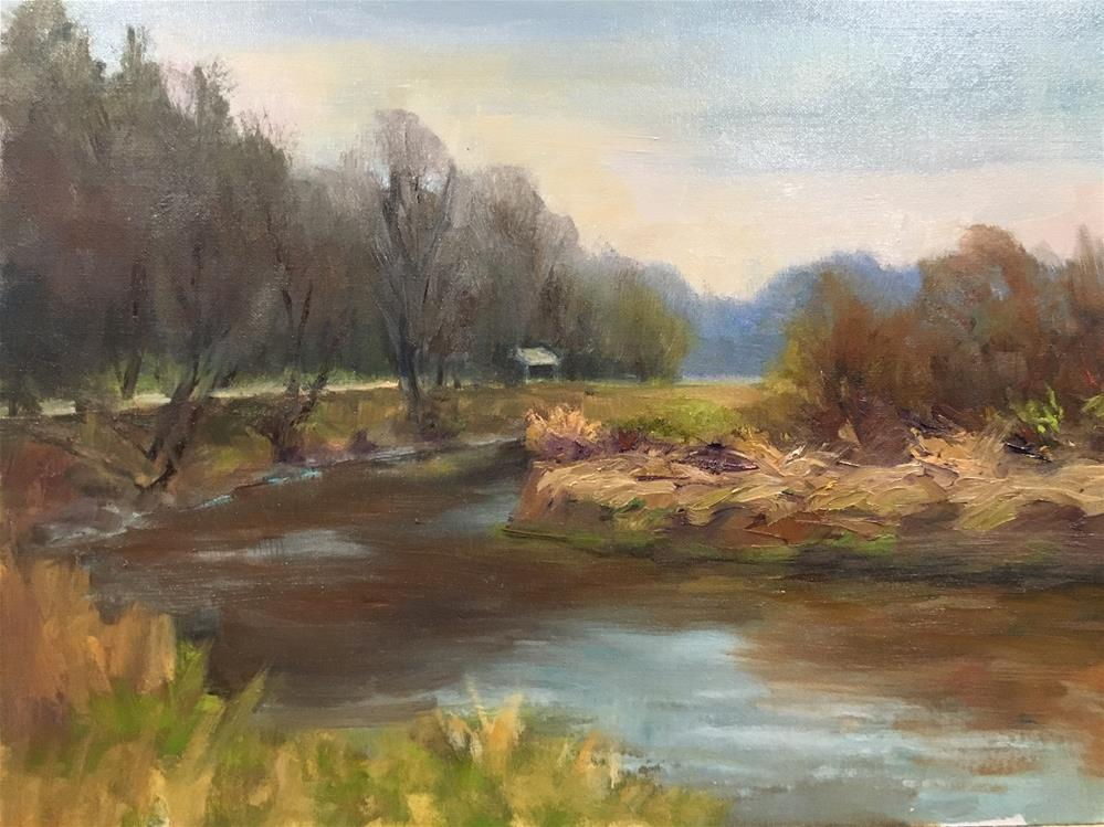 """""""Morning on the Canon River"""" original fine art by Judith Anderson"""