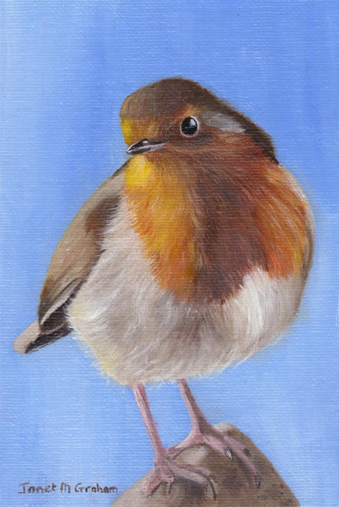 """European Robin"" original fine art by Janet Graham"
