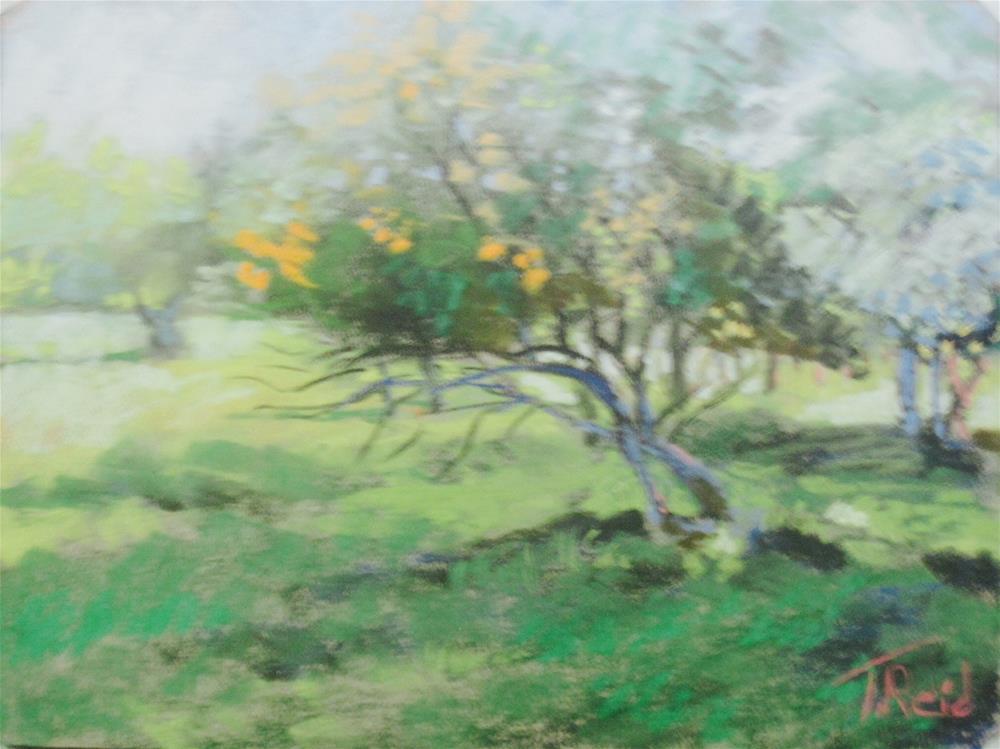 """Blessings of Spring"" original fine art by Toby Reid"