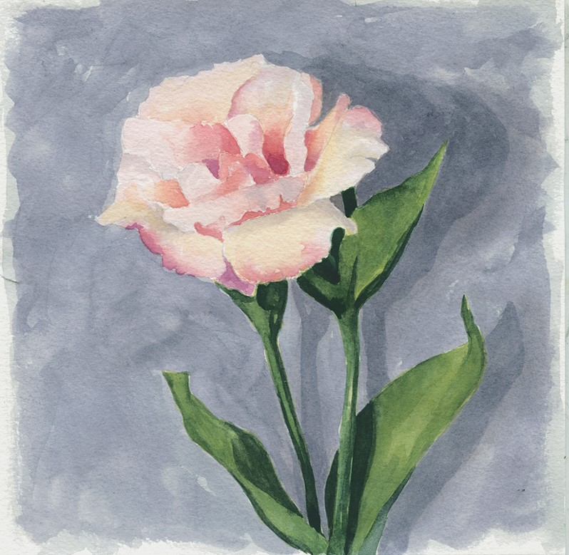 """Lisianthus watercolor painting"" original fine art by Ria Hills"