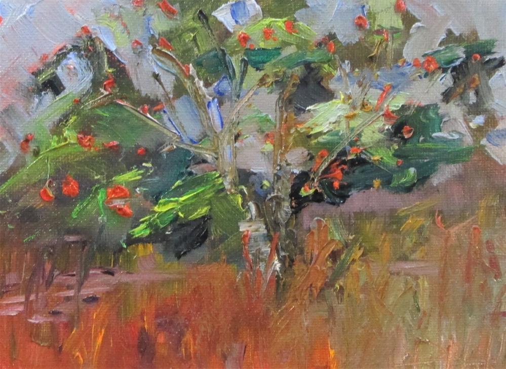 """Apple Tree"" original fine art by Delilah Smith"