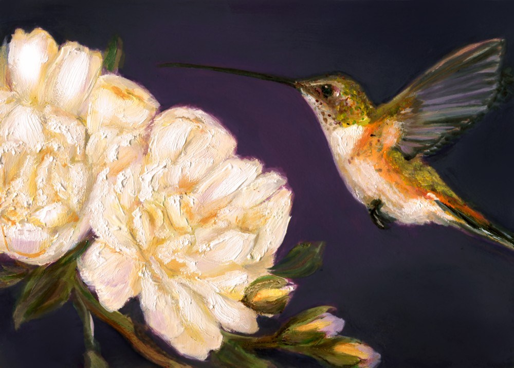 """Hummingbird XI"" original fine art by Sunny Avocado"