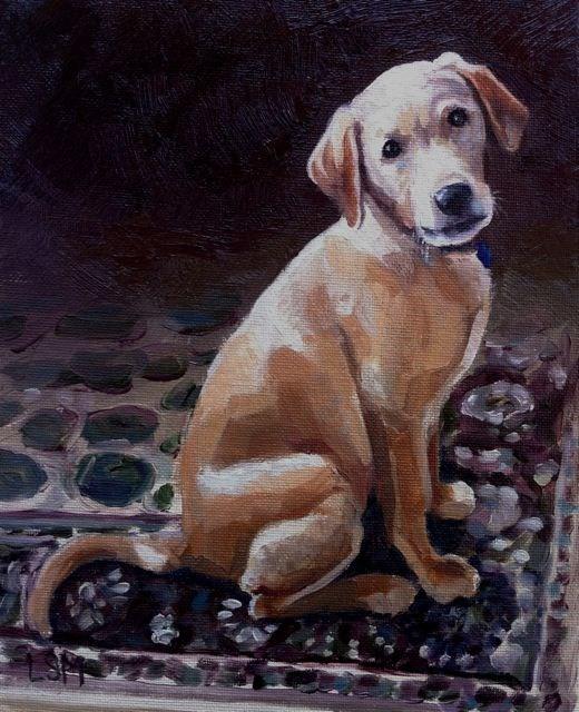 """""""Kiyo"""" original fine art by Linda Marino"""