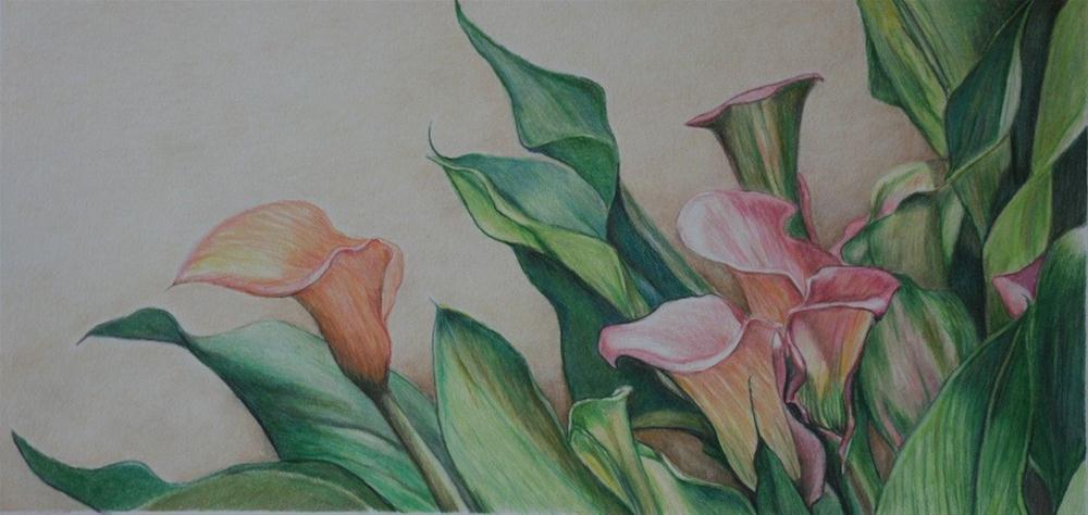 """Calla Lilies"" original fine art by Charlotte Yealey"