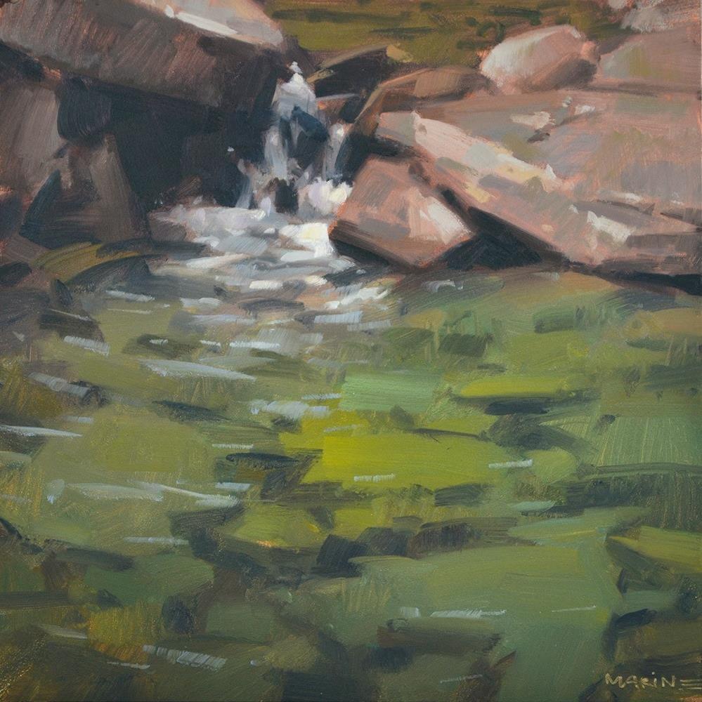 """""""Feeding the Pool"""" original fine art by Carol Marine"""