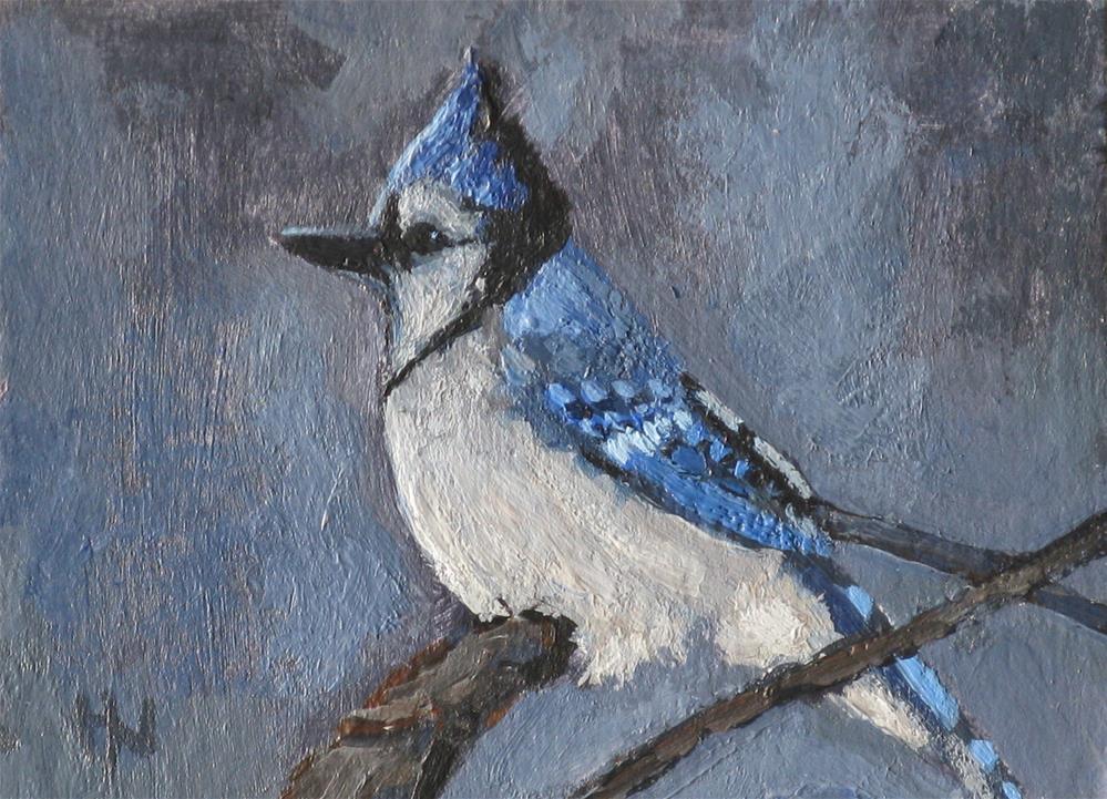 """""""Blue Jay"""" original fine art by Heather Nibert"""