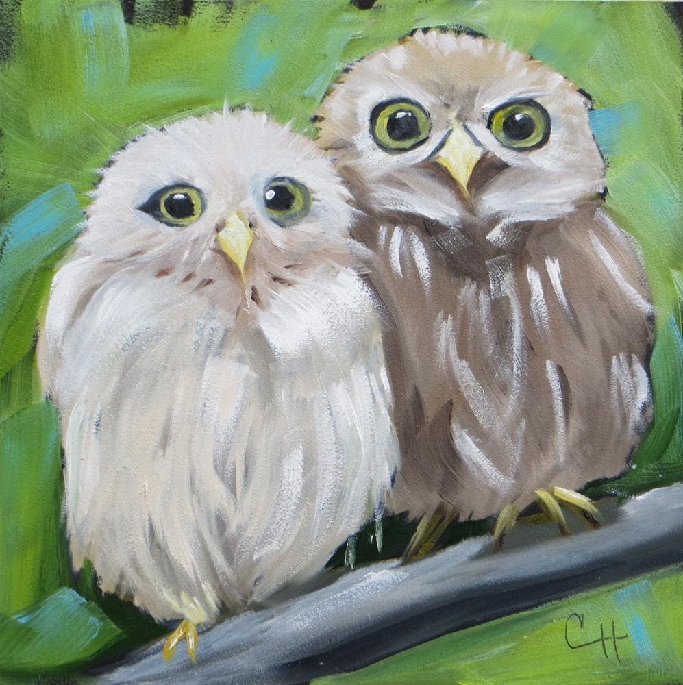 """Owl Chicks"" original fine art by Claire Henning"