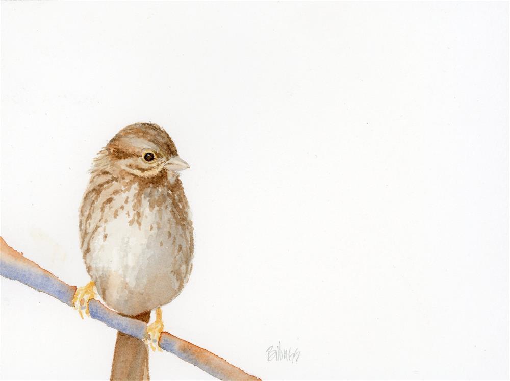 """""""Sparrow Study II"""" original fine art by Susanne Billings"""
