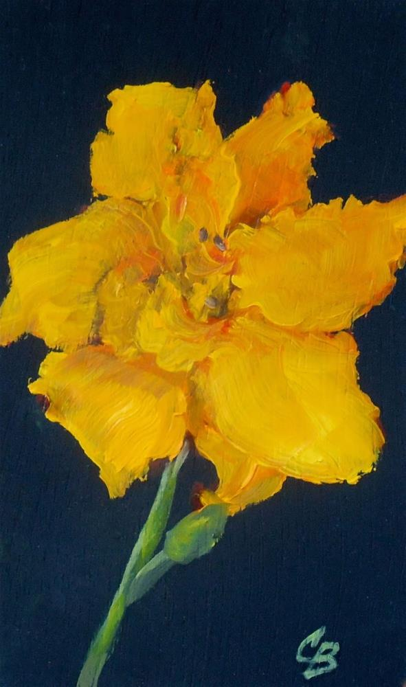 """Golden Daylily, 3x5 Oil on Wood Panel Daily Painting"" original fine art by Carmen Beecher"