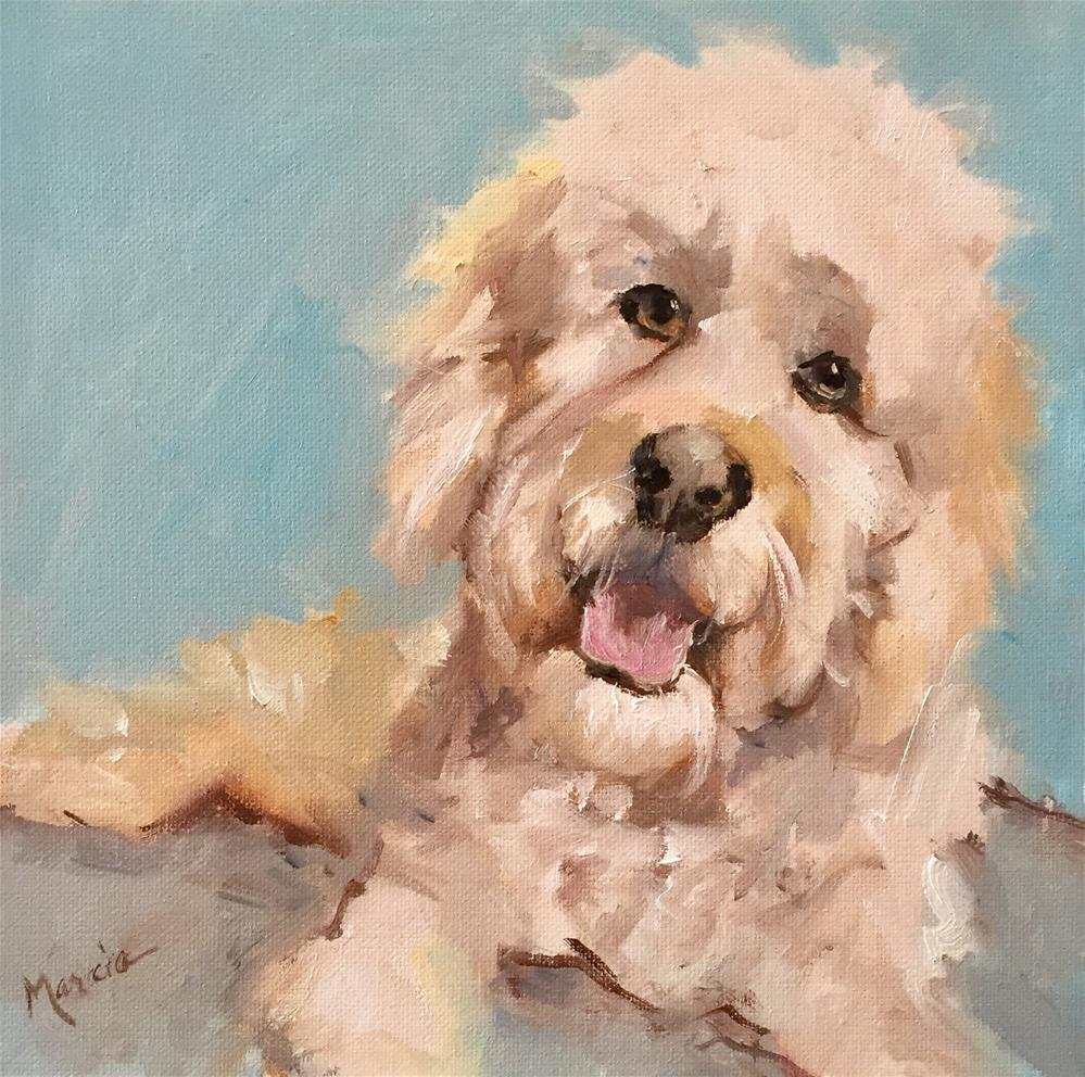 """Copper"" original fine art by Marcia Hodges"
