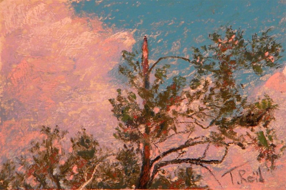 """Georgia Pines"" original fine art by Toby Reid"