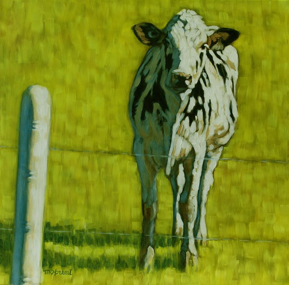 """Curious Cow"" original fine art by Margaret Horvat"