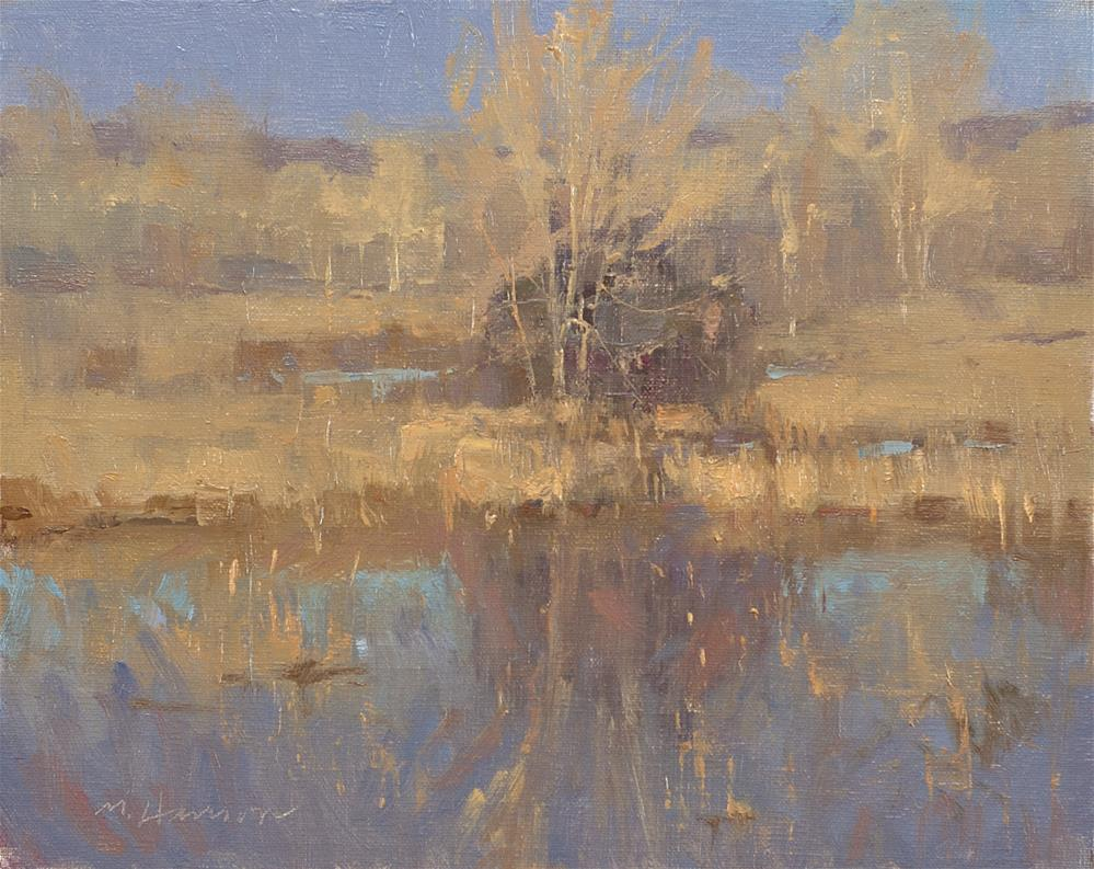 """2-28-4 Habitat 4"" original fine art by Marc Hanson"