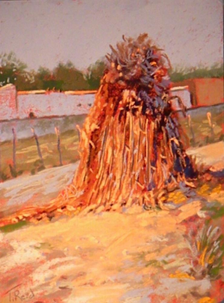 """End of harvest"" original fine art by Toby Reid"