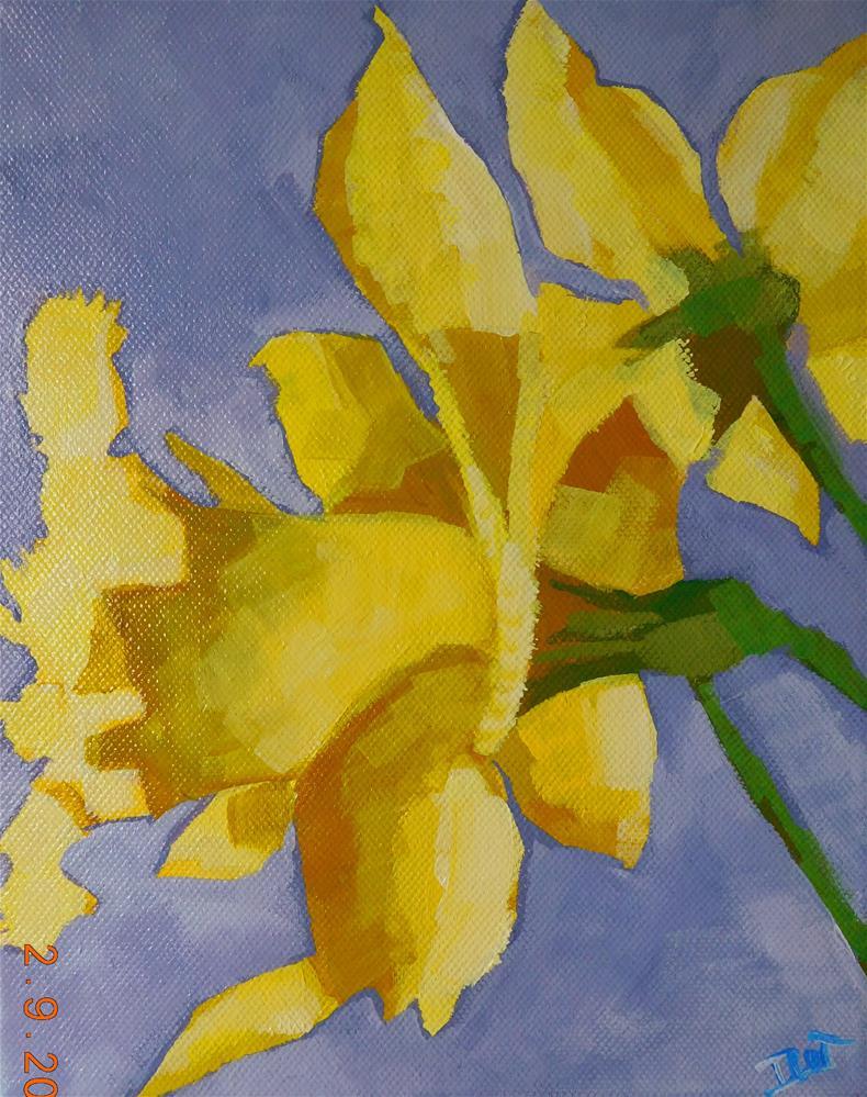 """""""Bright Daffs"""" original fine art by Daryl West"""