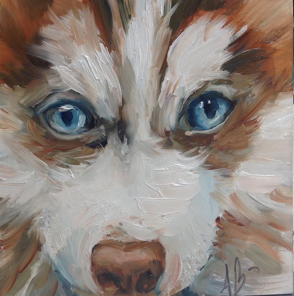 """""""Puppy Blue Eyes"""" original fine art by Annette Balesteri"""
