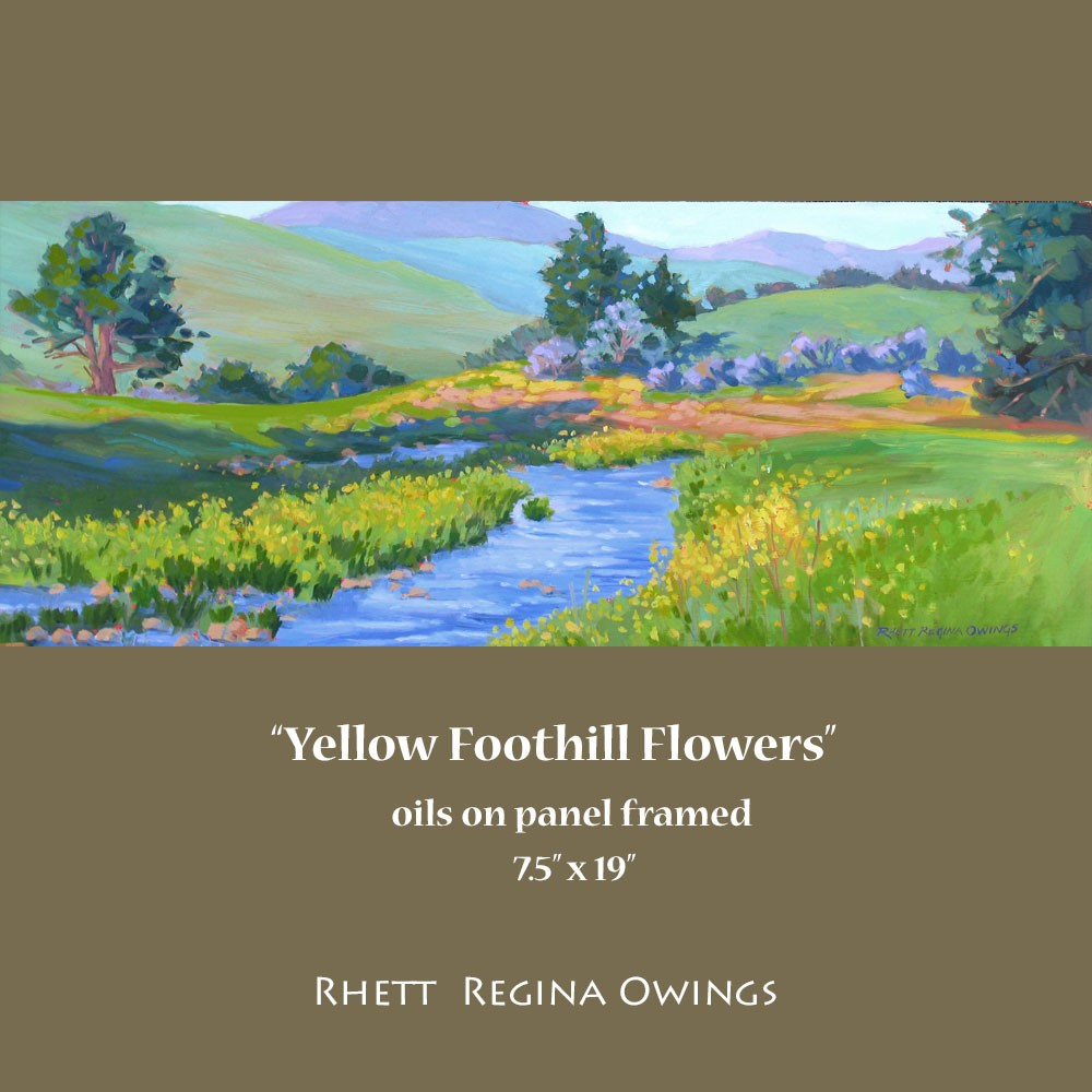 """Yellow Foothill Flowers"" original fine art by Rhett Regina Owings"