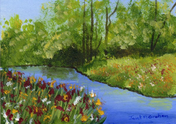 """""""Flowers by the River ACEO"""" original fine art by Janet Graham"""