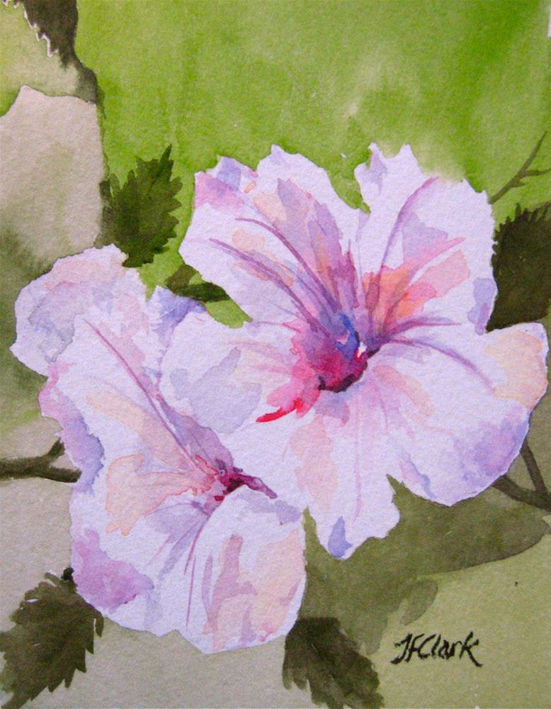 """Hibiscus, tiny study"" original fine art by Judith Freeman Clark"