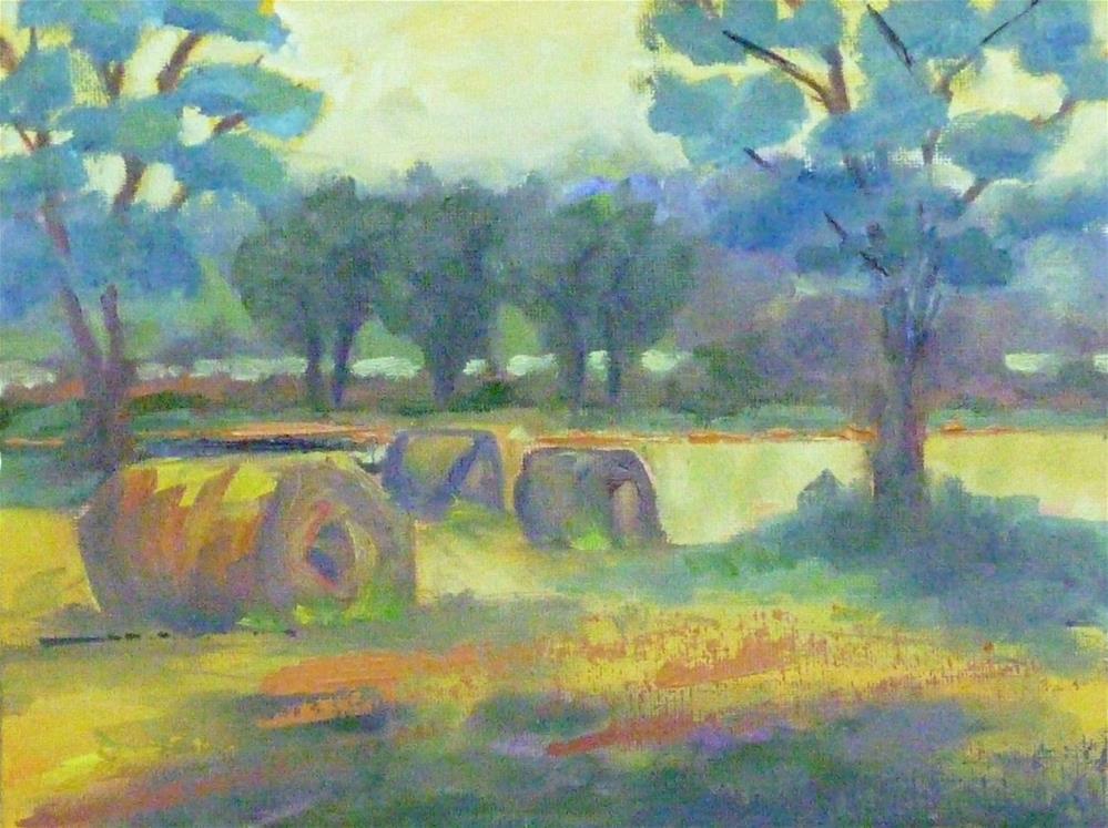 """""""Hay Harvest"""" original fine art by Shawn Deitch"""