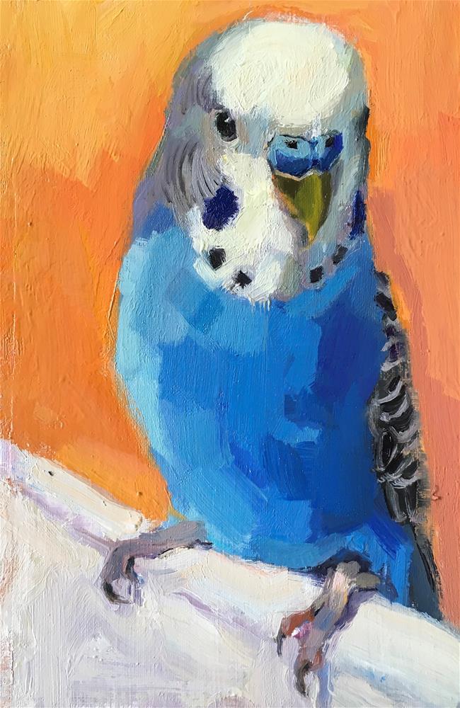 """Budgie55_oil"" original fine art by Katya Minkina"