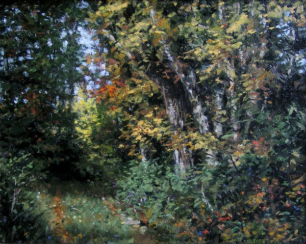 """Along an Autumn Path"" original fine art by Danny O'Leary"