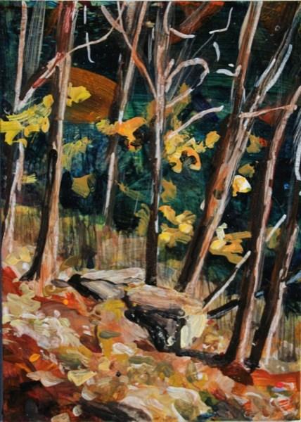 """Letchworth State Park"" original fine art by Chris Breier"