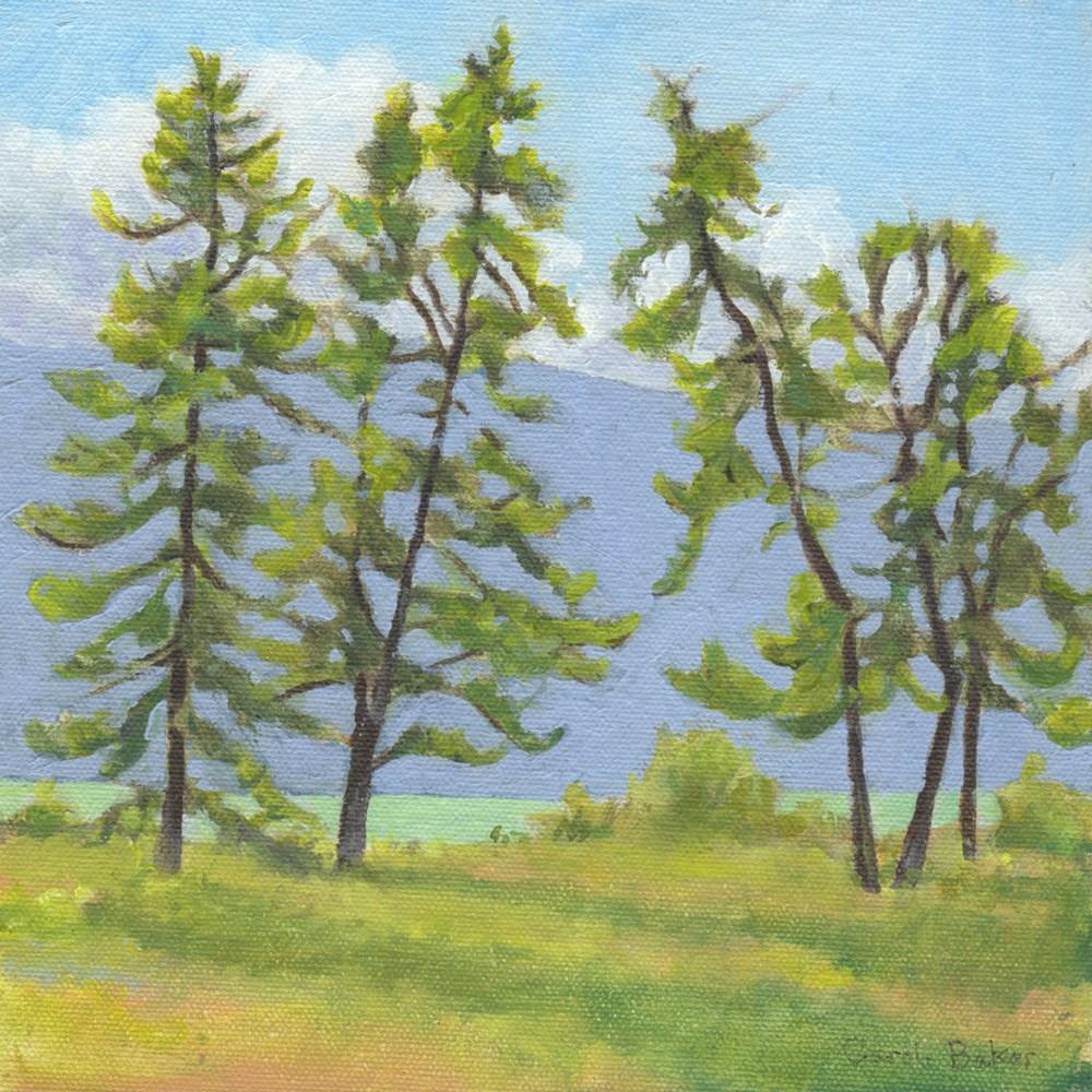 """Atlin Pines"" original fine art by Carole Baker"