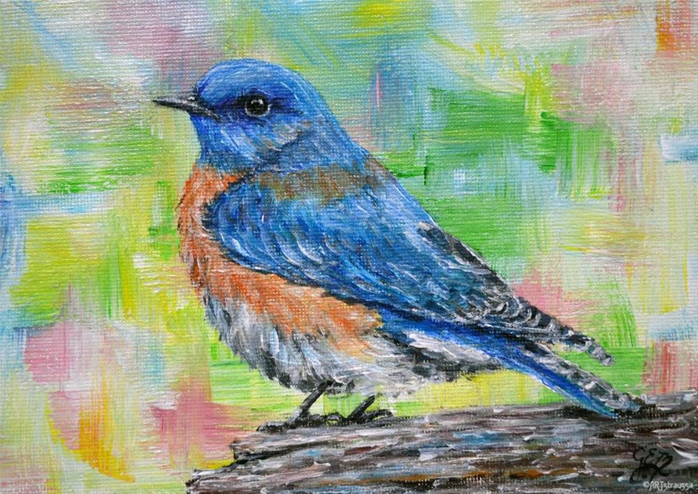 """Lone Bluebird"" original fine art by Gloria Ester"