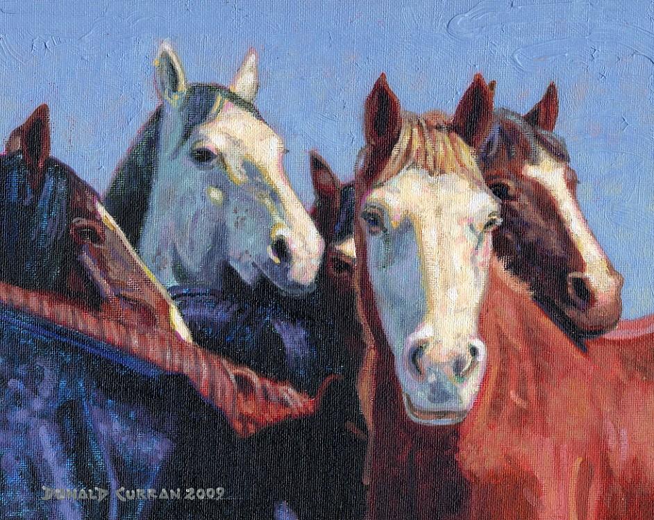 """""""Wild Horses"""" original fine art by Donald Curran"""