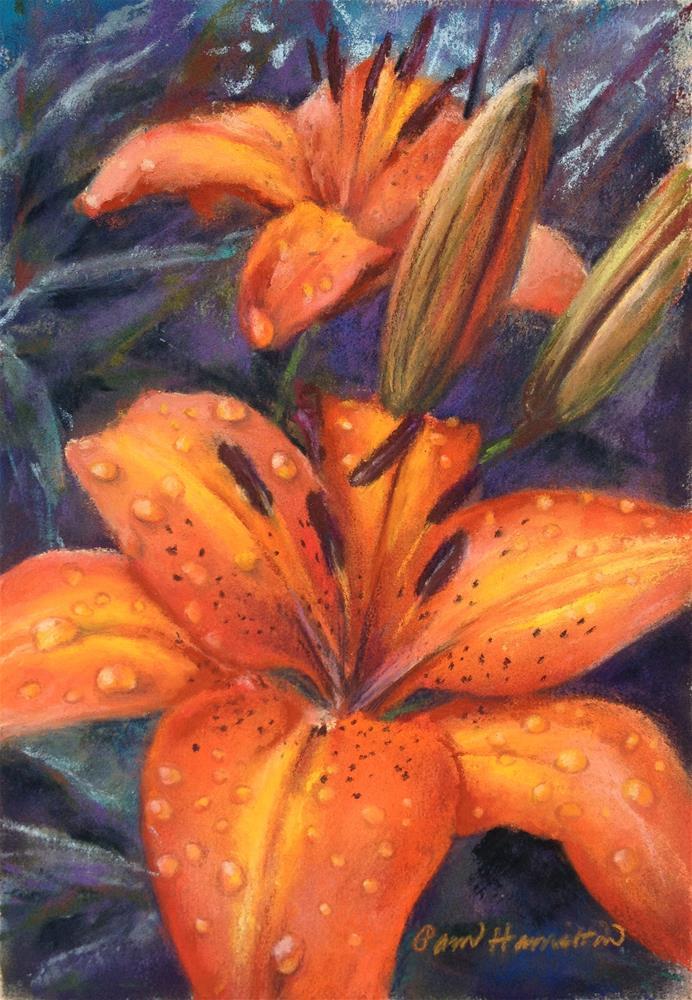 """Tiger Lily"" original fine art by Pamela Hamilton"