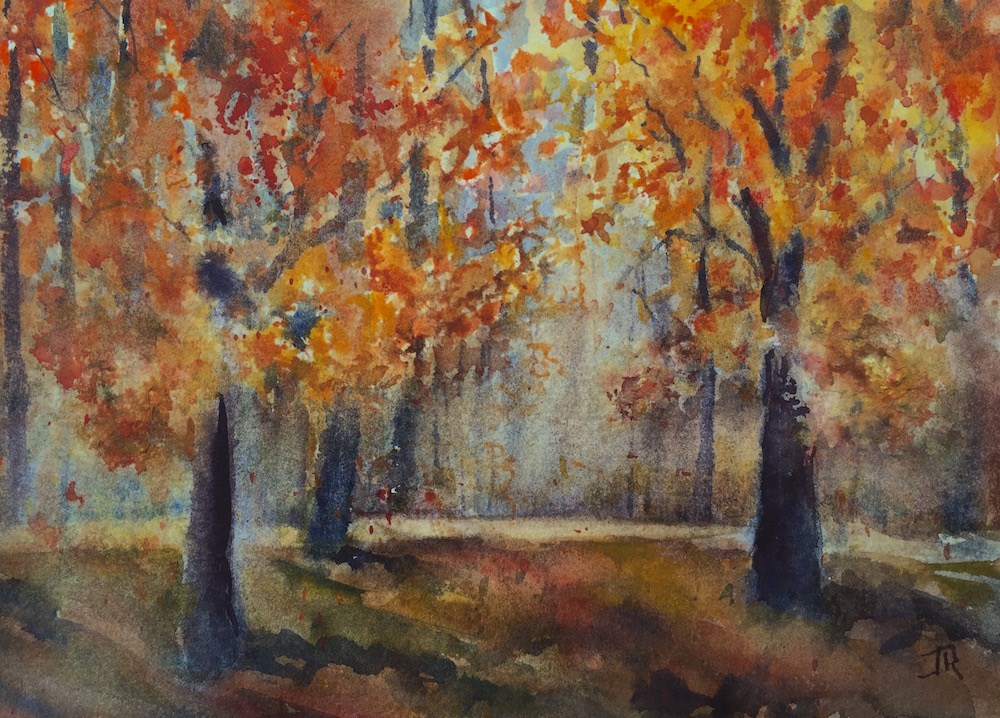 """Autumn Morning"" original fine art by June Rollins"