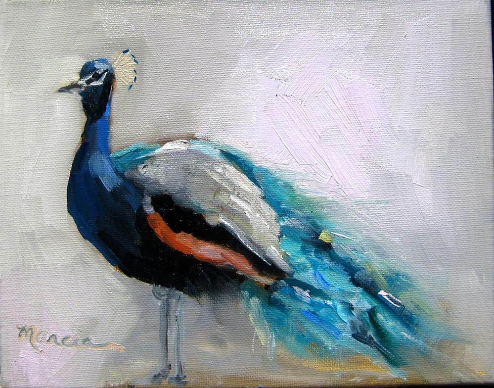 """""""Poppin Peacock"""" original fine art by Marcia Hodges"""