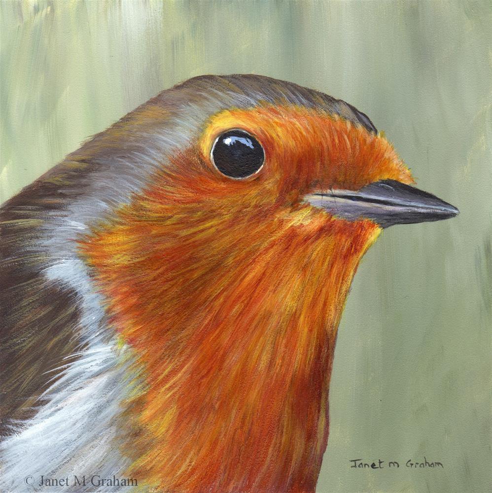 """Robin No. 8"" original fine art by Janet Graham"