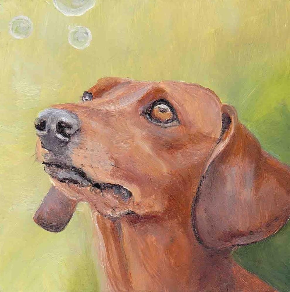 """""""Dachshund Sees Bubbles"""" original fine art by Charlotte Yealey"""