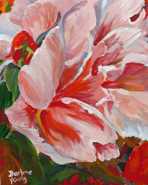 """A Rose Named Joe, acrylic on canvas, 8x10"" original fine art by Darlene Young"
